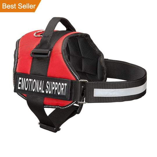 All-In-One Dog Harness
