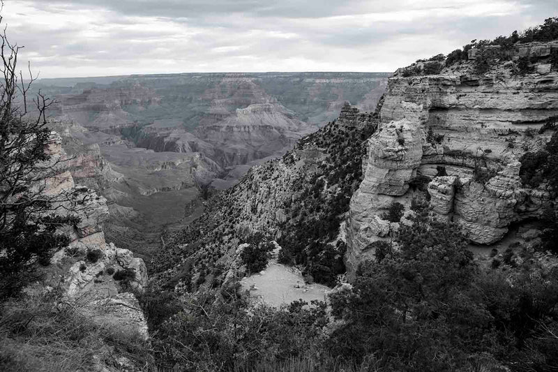 South Rim Black and White