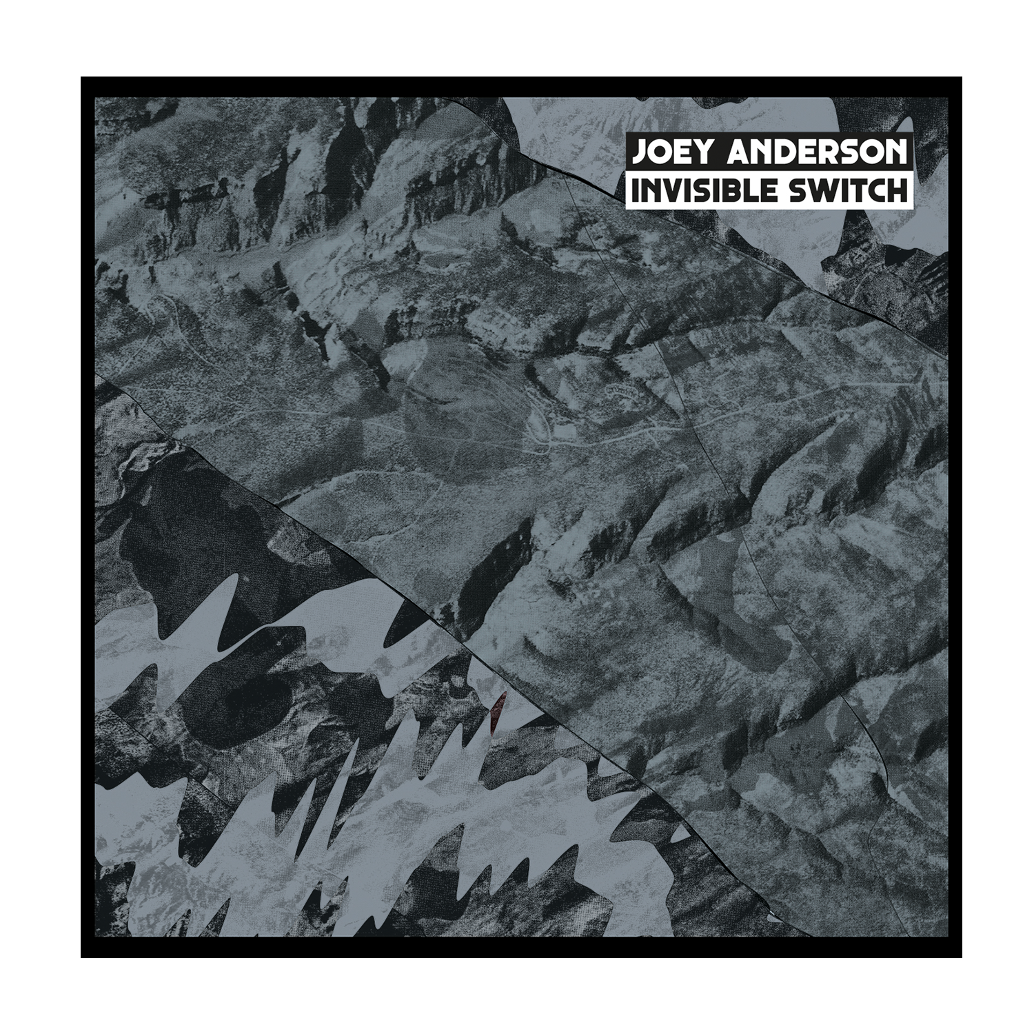 JOEY ANDERSON - INVISIBLE SWITC 12""