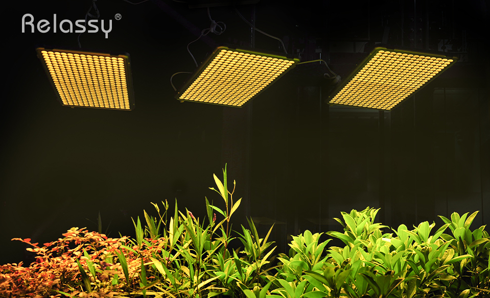 300W Relassy Full Spectrum LED Grow Light