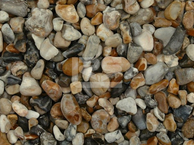 Oyster Lydd Pebbles