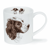Dunoon Springer Spaniel Fine Bone China Mug