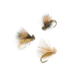 Caddis 3 Pack