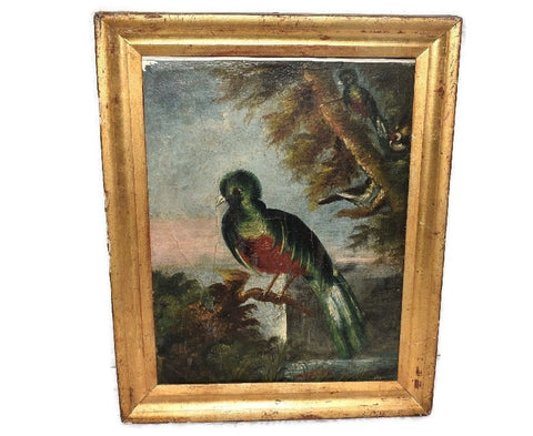 19th Cent Folk Art Oil Painting Birds of Paradise with Gilt Frame - Premier Estate Gallery