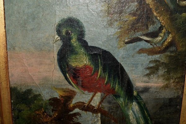 19th Cent Folk Art Oil Painting Birds of Paradise with Gilt Frame - Premier Estate Gallery 2