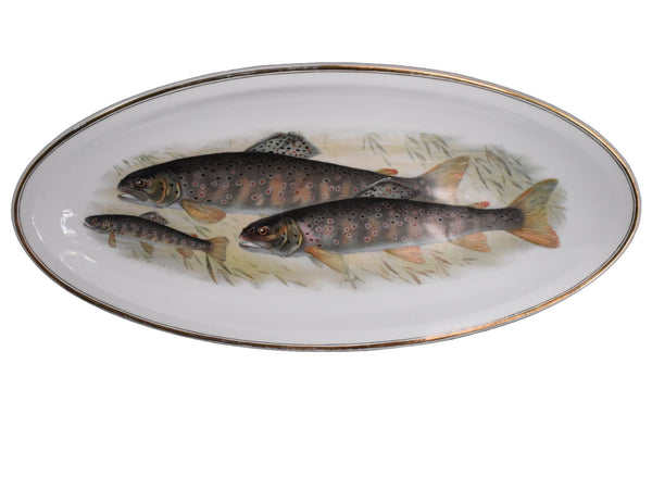 Antique Porcelain Fish Platter Fish Plate Set B. Bloch Eichwald Porcelain 10 pc - Premier Estate Gallery 1