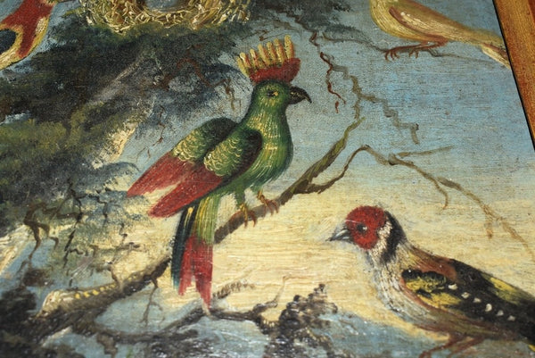 19th Century Folk Art Oil Painting Birds of Paradise Gilt Frame