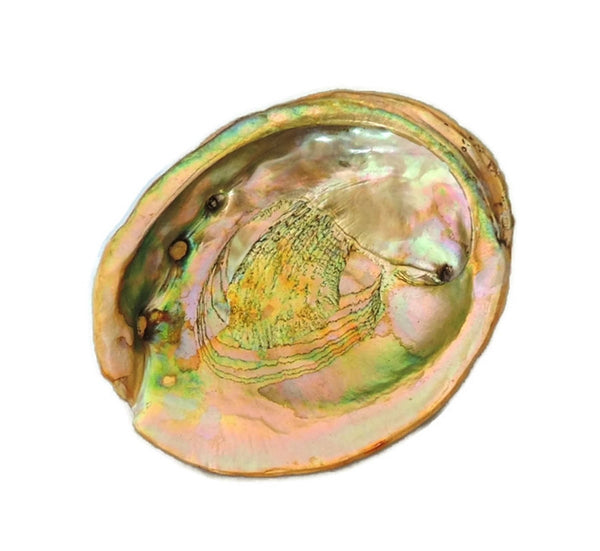 Mid Century Abalone Shell Lucite Footed Bowl - Premier Estate Gallery  - 2