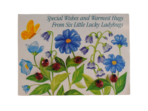 Ladybug Buttons on Vintage Greeting Card Six Small Buttons - Premier Estate Gallery