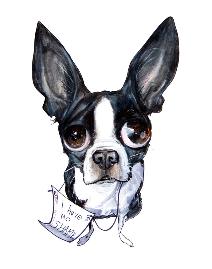 Pet Portrait Spotlight: Boston Terriers