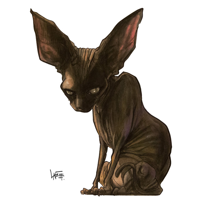 P the Black Sphynx: Custom Caricature Illustration.
