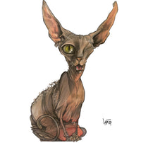 Custom Caricature Illustration: Taco the One-Eyed Grey Sphynx