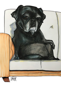 black pug pet portrait by canine caricatures john lafree