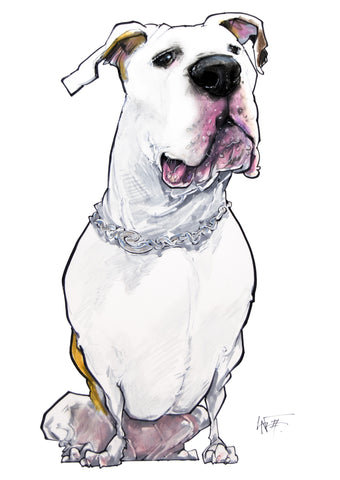 American Bulldog pet caricature portrait illustration by artist John LaFree