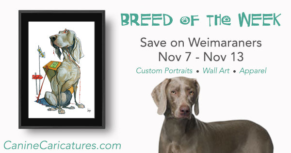 Canine Caricatures Breed of The Week - Weimaraners