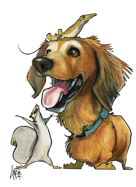 Dog Portrait Pet Portrait by Canine Caricatures John LaFree