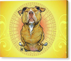 Meditating Pit Bull by Canine Caricatures John LaFree