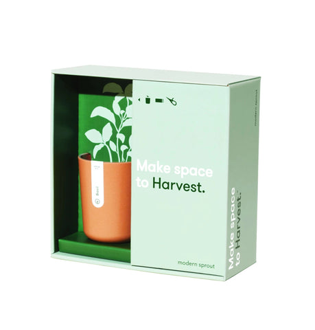 Harvest Planter Gift Set - The Brant Foundation Shop
