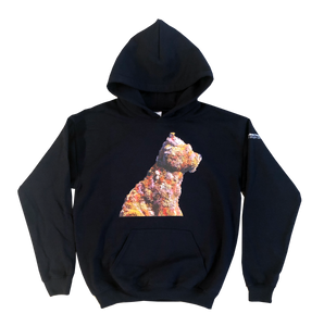Jeff Koons Puppy Hoodie (Kids) - The Brant Foundation Shop