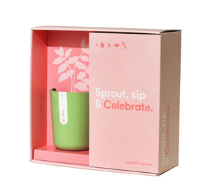 Celebrate Planter Gift Set - The Brant Foundation Shop