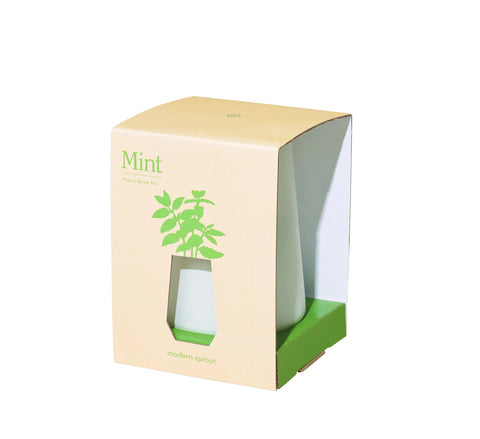 Tapered Tumbler Grow Kit - Mint - The Brant Foundation Shop