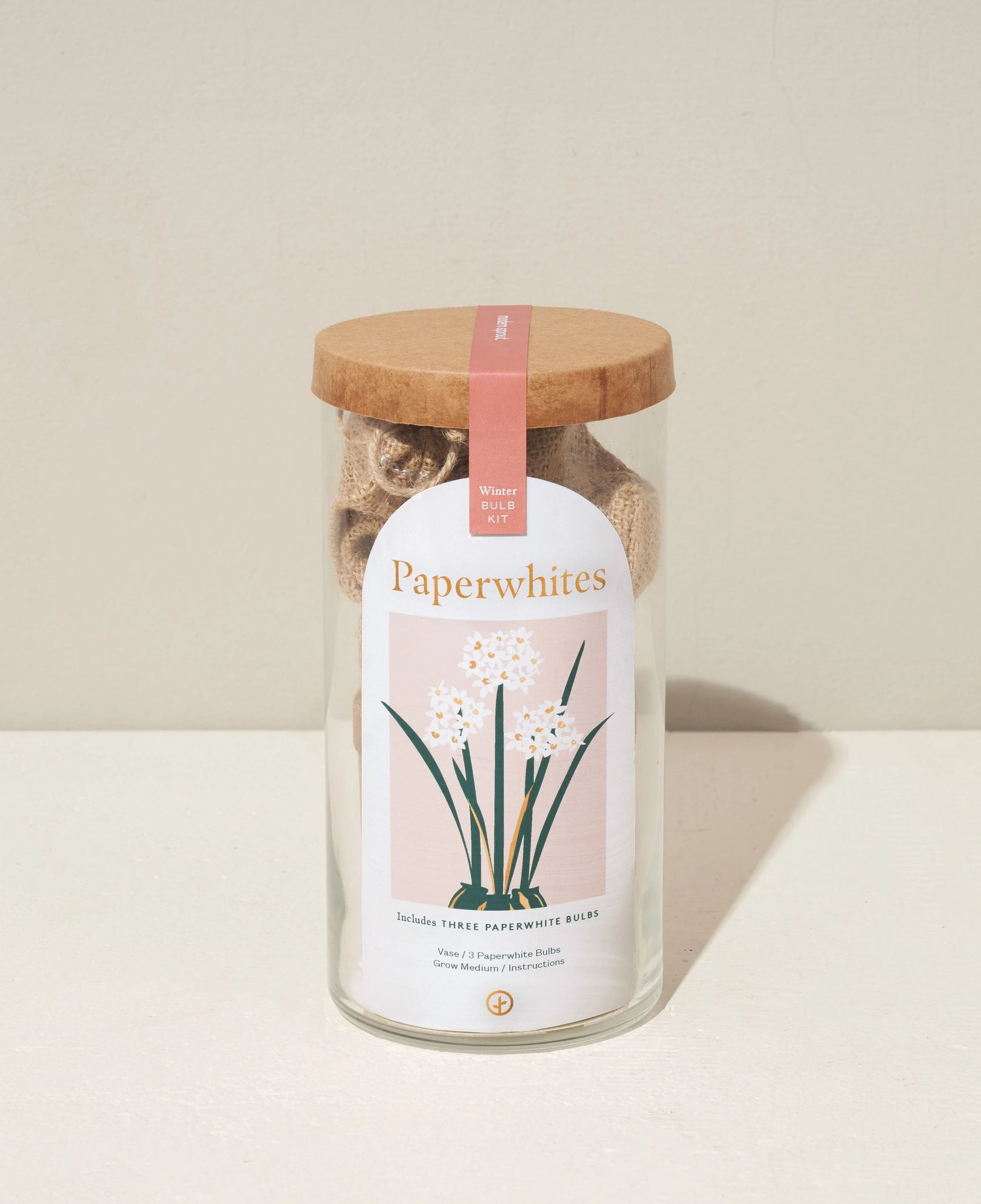 Winter Bulb Kit - Paperwhite Bulbs - The Brant Foundation Shop