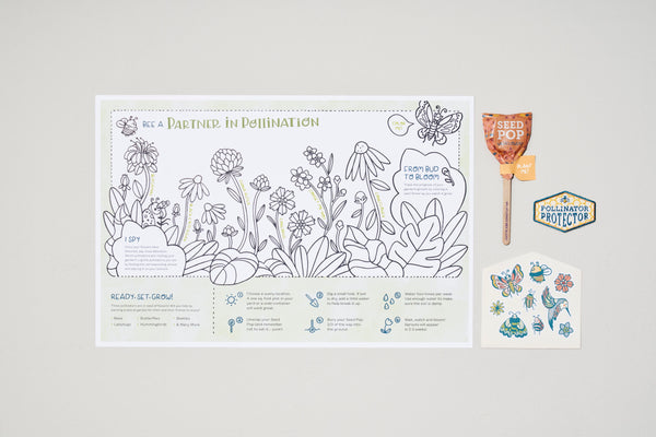 Pollinator Protector Activity Kit - The Brant Foundation Shop