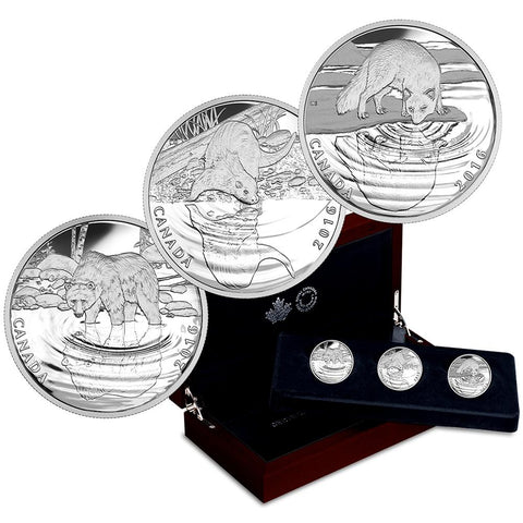 2016 Canada $10 Reflections of Wildlife: Grizzly 1/2 oz Silver Coins 3-Coin Set