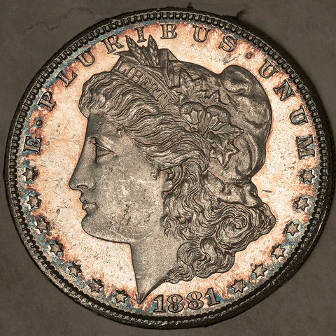 "Pretty 1881-S Morgan Dollar in Vintage ""Tidy House/Omaha Coins"" - Choice Toned Uncirculated"
