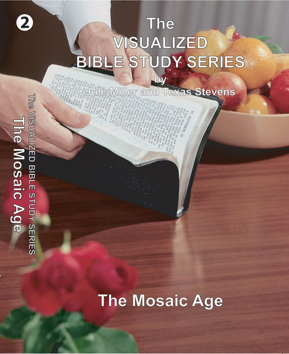 VBSS Visualized Bible Study Series Disc 2 The Mosaic Age - Glad Tidings Publishing