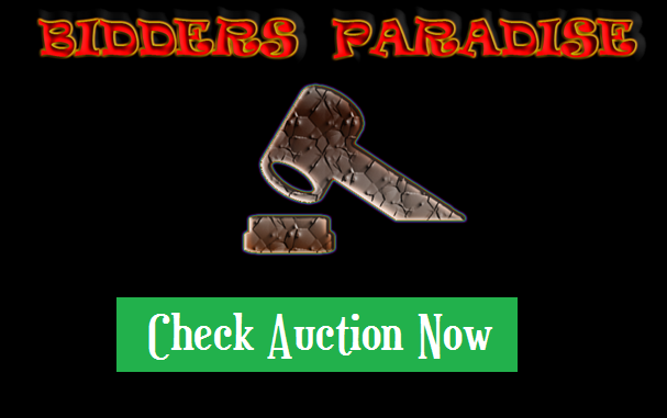Check out the Auction room
