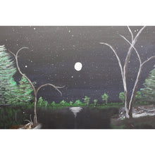 Load image into Gallery viewer, artlyne - Midnight Scene - Artwire - Acrylic art