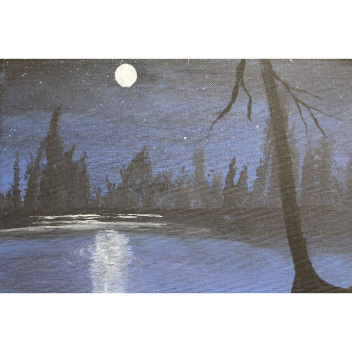 artlyne - Moonlight Scene - Artwire - Acrylic art