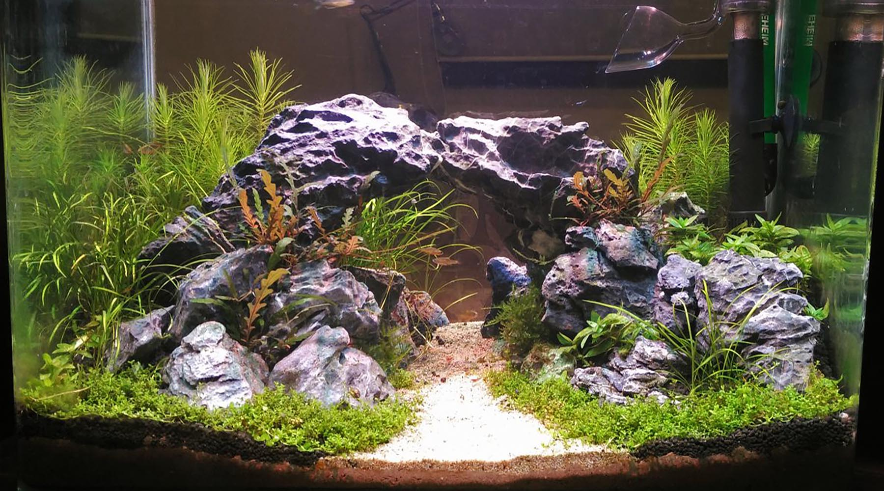 Separating sand from aquasoil areas