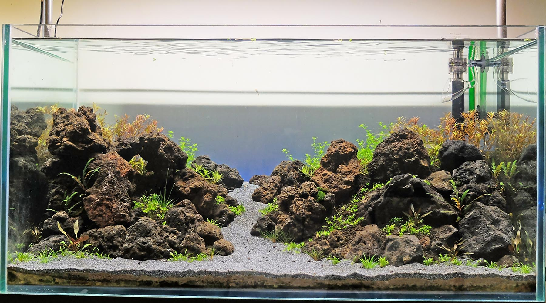 Should I bother cycling a planted tank before planting?