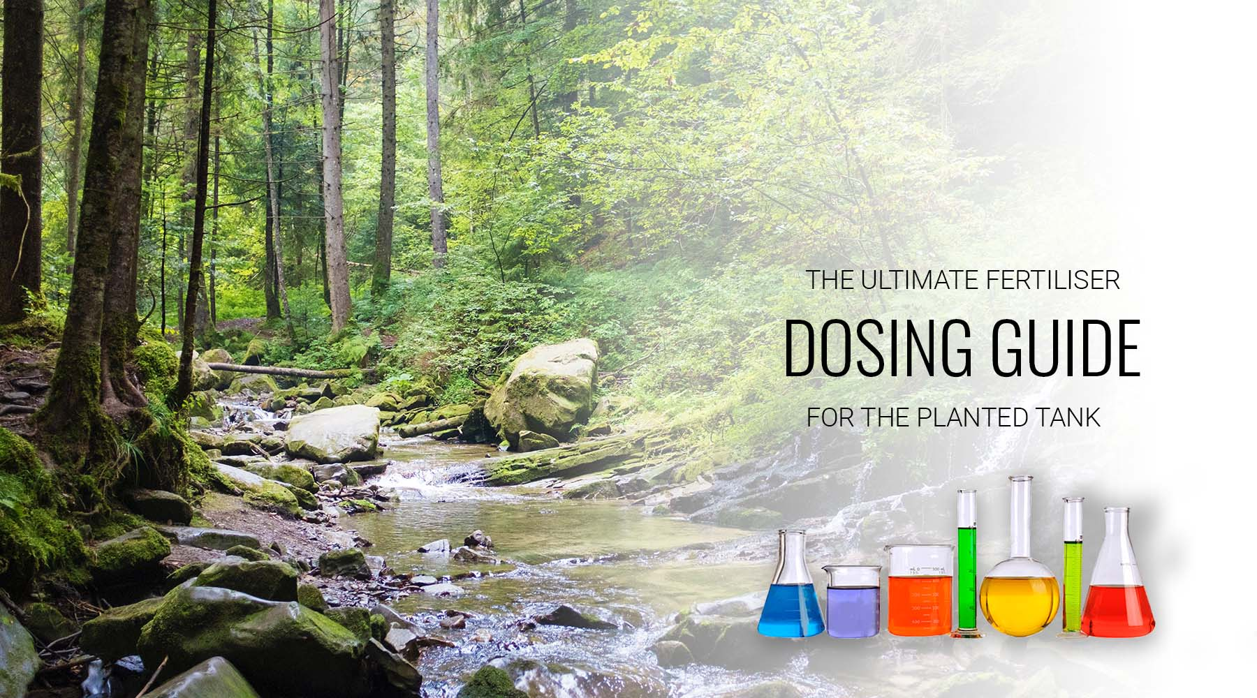 Fertilizer dosing guide for planted aquariums; when to dose more or less ?
