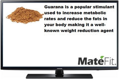 MateFit Teatox Metabolic Boost Ingredients Guarana Powder