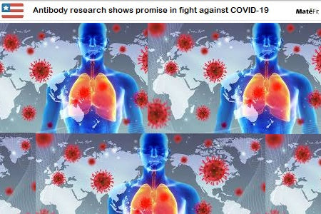 News Antibody research shows promise in fight against COVID-19 - Teatox Co