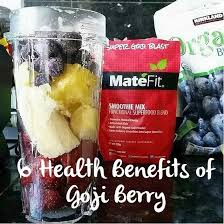 A complete overview on Super Goji Blast Product