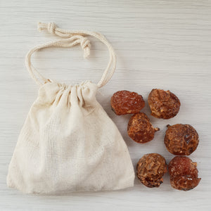 trial bag of organic soapnuts laundry detergent
