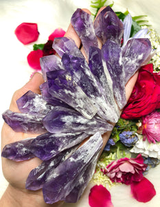 Royal Amethyst Crystals, Point Bahai Brazil