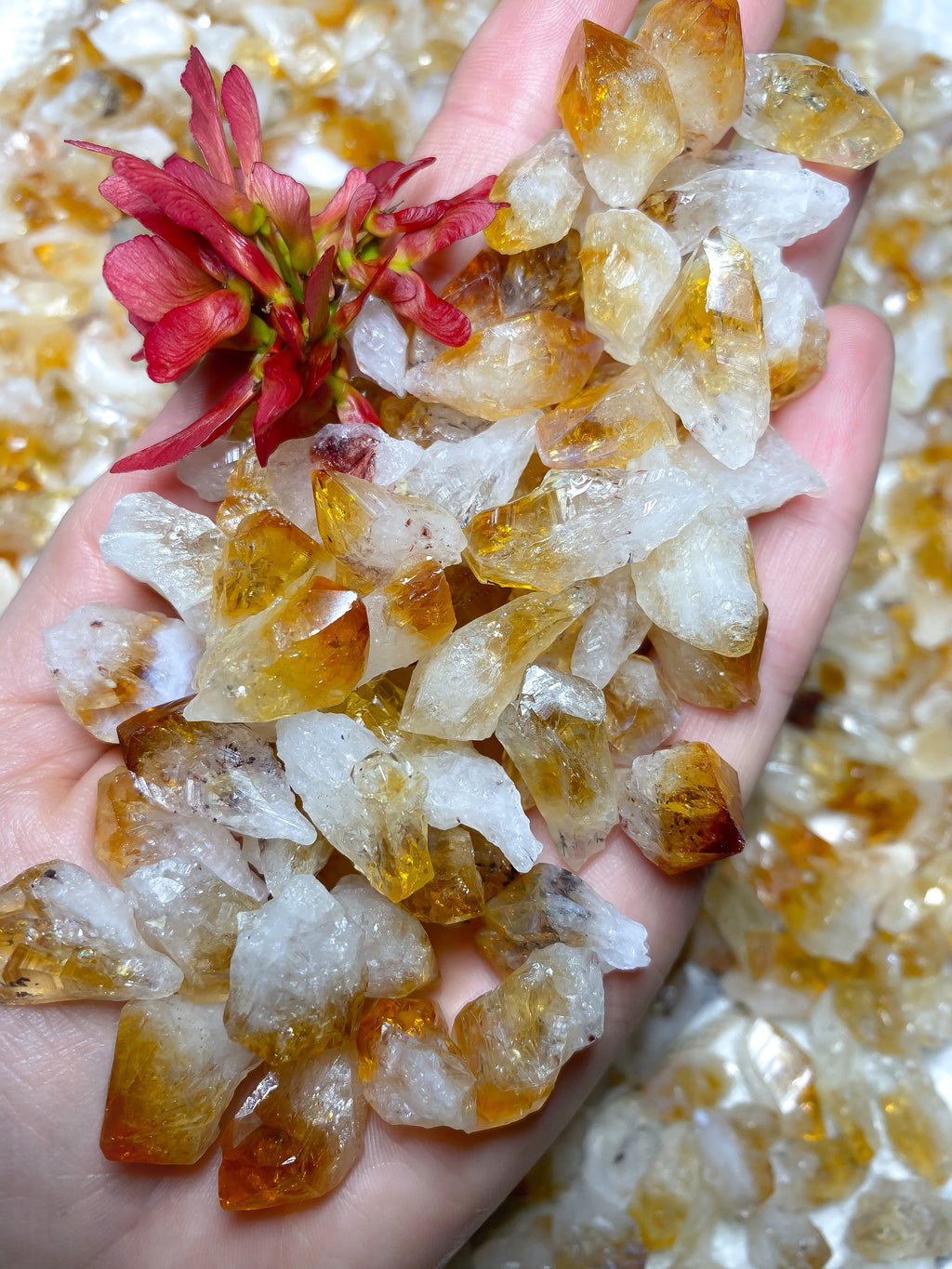 Citrine Crystal Points 100g Pack