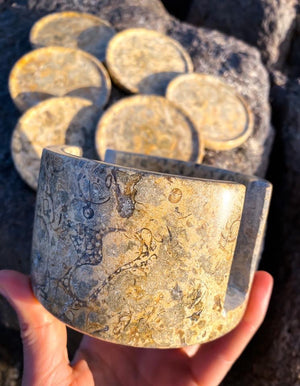 Fossilised Coral Drink Coaster Set