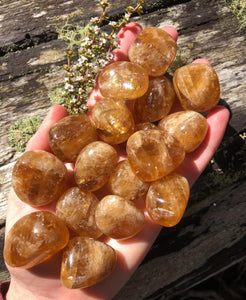 Honey Calcite Crystal Tumblestones