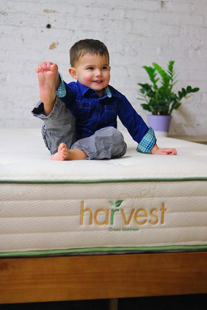 Harvest Joey on an original harvest mattress Showing His Foot
