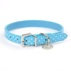 Dog Collars Polka