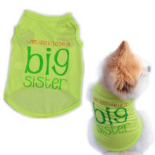 Load image into Gallery viewer, Spring/Summer Big Sister Dog T-shirt