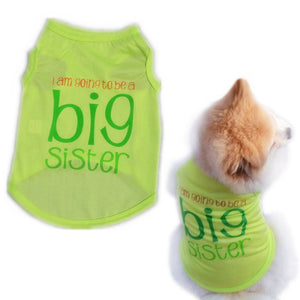 Spring/Summer Big Sister Dog T-shirt