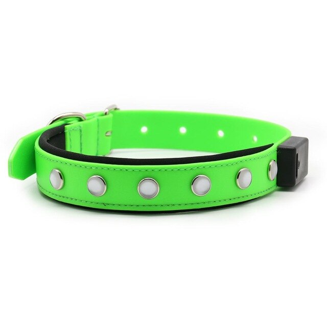 LED Rechargeable Glowing Dog Collar