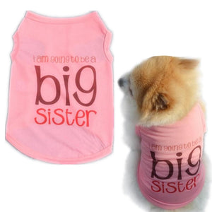 Spring/Summer Big Sister T-Shirt